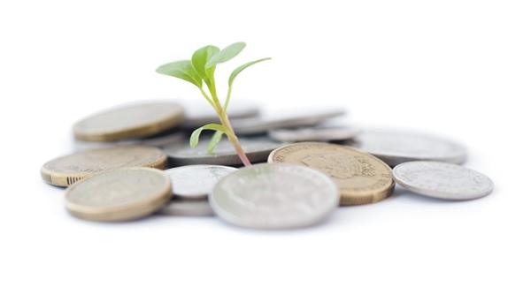 diversificar investimentos